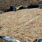 Filtre à sable imperméabilisé - WaterCleanOnline